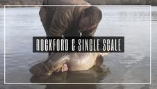 Rockford & Single Scale