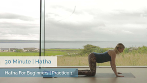 Hatha Foundations 1 | Beginner