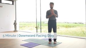 Downward Facing Dog | All Levels