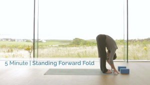Standing Forward Fold | All Levels