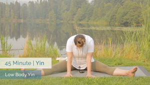 Low Body Yin | All Levels