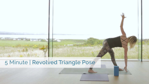 Revolved Triangle Pose | All Levels