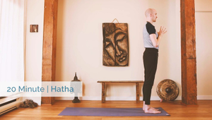 Whole Body Hatha | Beginner