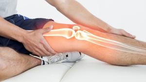 Blog | Bones of the Upper & Lower Limbs