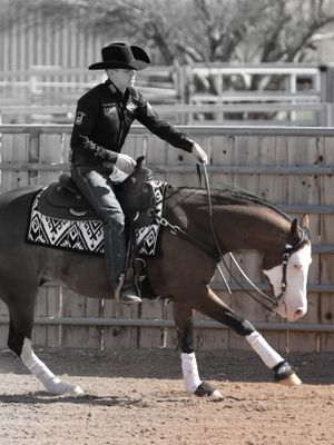 Problem Solving with Horse&Rider OnDemand