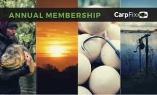 price option <p>Annual Membership</p>