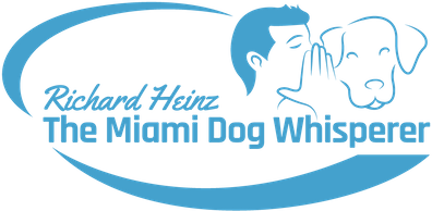 The Miami Dog Whisperer Dog Training Videos