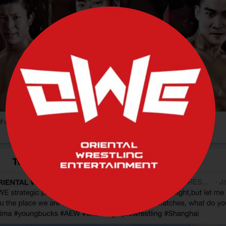 Oriental Wrestling Entertainment