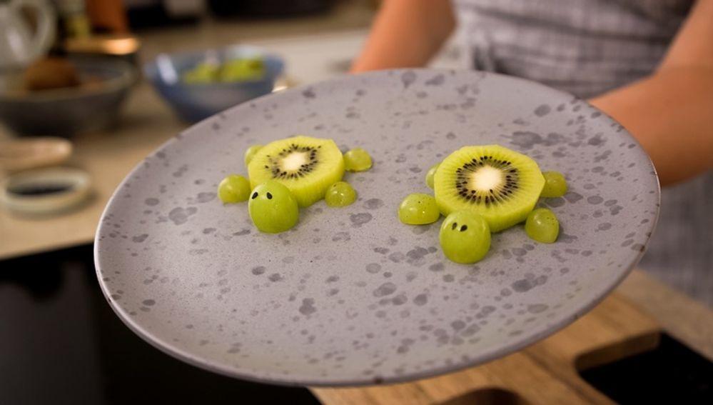 Skildpadder til børn