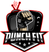 Punch Fit TV