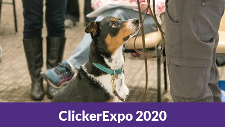 ClickerExpo 2020