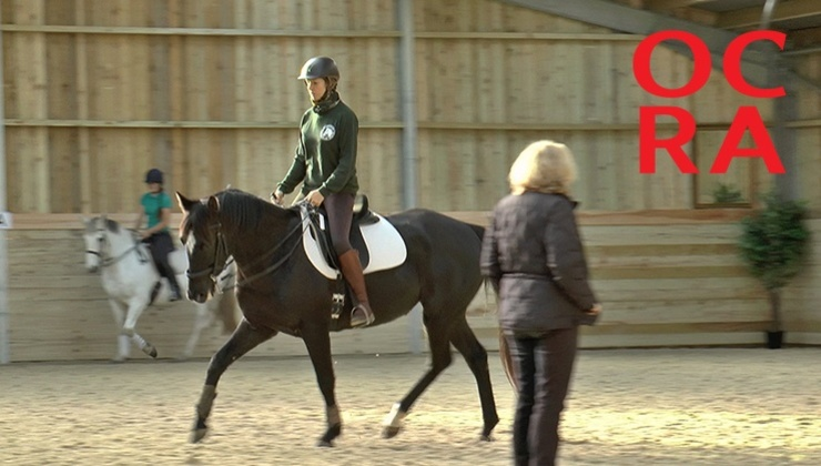 Online Classical Riding Academy - video library of Enlightened Equitation's Heather Moffett