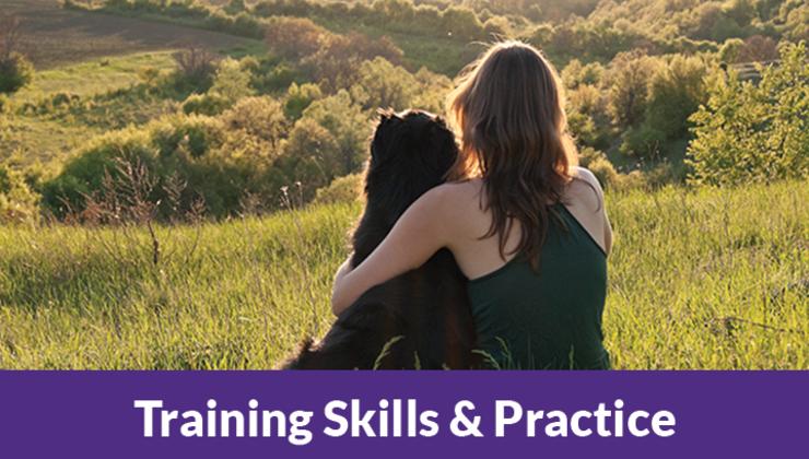 Training Skills & Practice