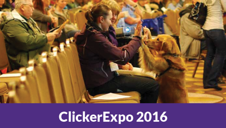 ClickerExpo 2016