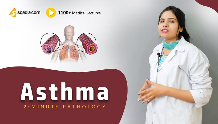 2-Minute Pathology: Asthma