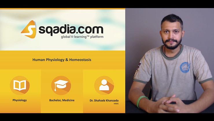 Human Physiology and Homeostasis