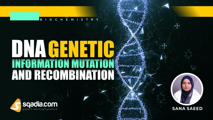 DNA: Genetic Information, Mutation and Recombination