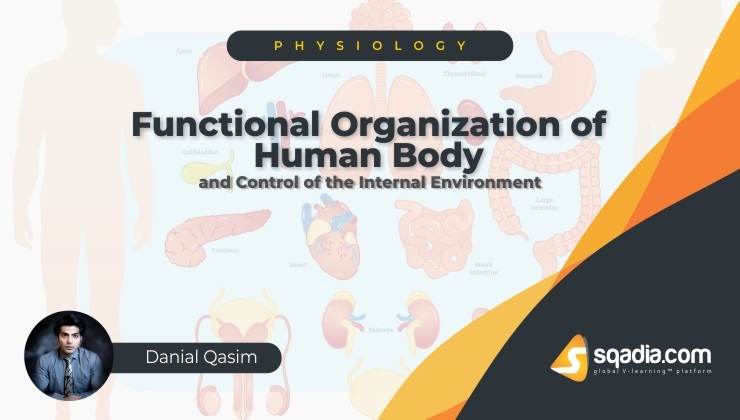 """Functional Organization of the Human Body and Control of the """"Internal Environment"""""""