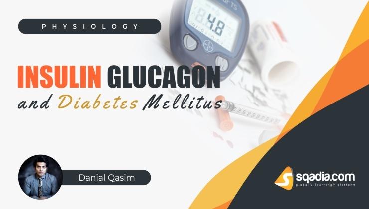 Insulin, Glucagon and Diabetes Mellitus