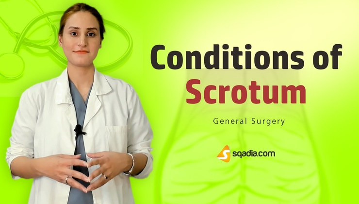 Conditions of Scrotum