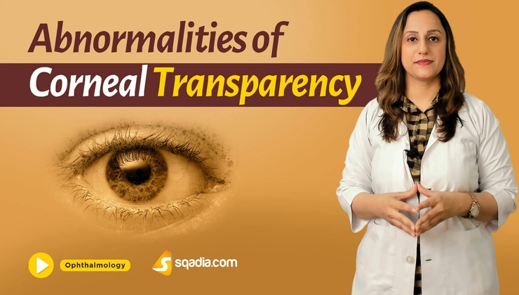 Abnormalities of Corneal Transparency