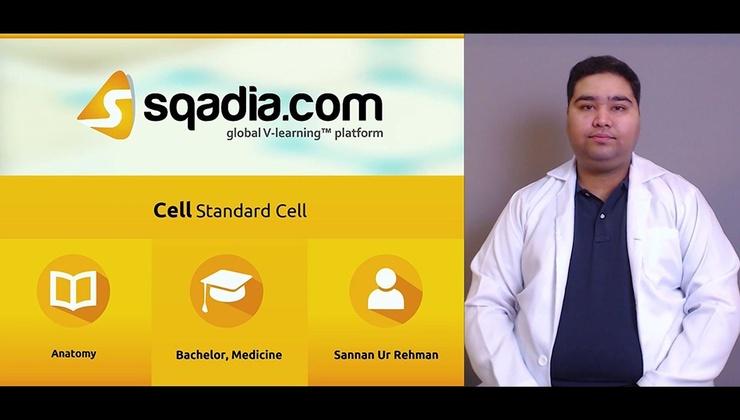 Standard Cell (SUR)