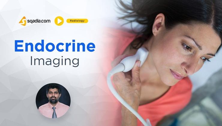 Endocrine Imaging
