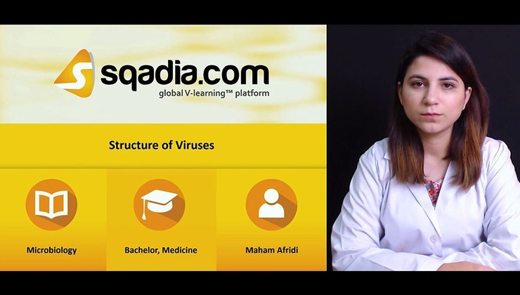 Big d0ltqqihrnco0hwqr9yv 171213 s0 afridi maham structure of viruses intro