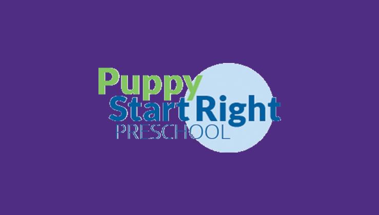 Hta2ul3fr8yekvntphnb puppy start right preschool featured image