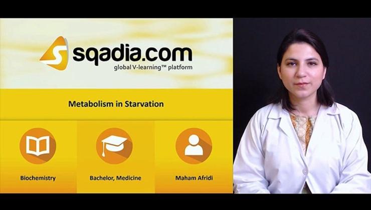 Big yxrcdn8eqsinepjj0nb5 180428 s afridi maham metabolism in starvation poster m