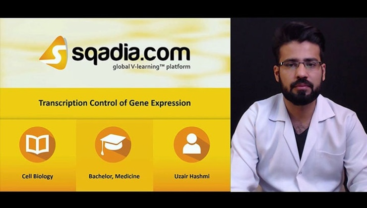 Transcription Control of Gene Expression