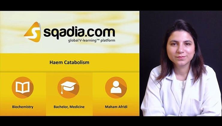 Haem Catabolism