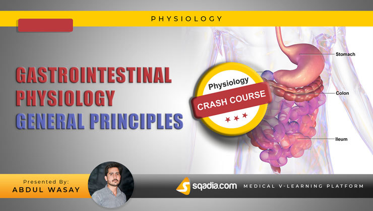 Gastrointestinal Physiology: General Principles (Crash Course)