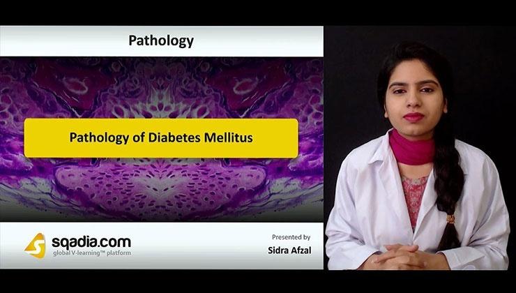 Pathology of Diabetes Mellitus