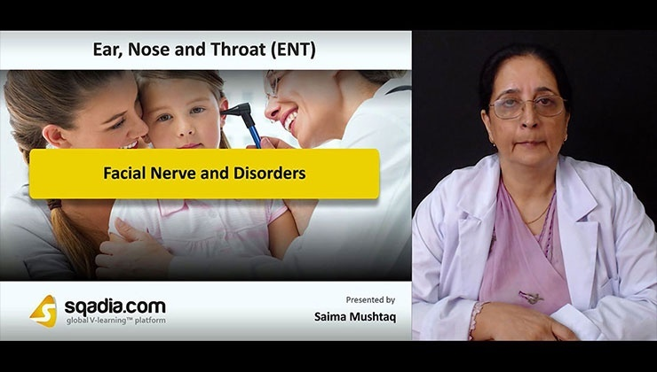 Facial Nerve and Disorders