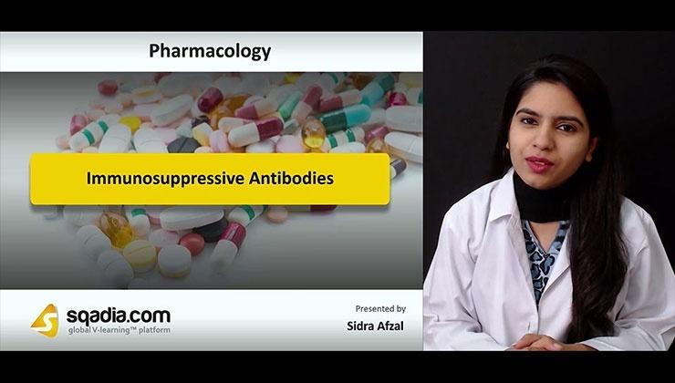 Immunosuppressive Antibodies