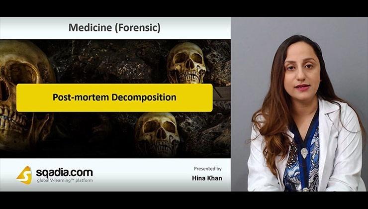Post-mortem Decomposition
