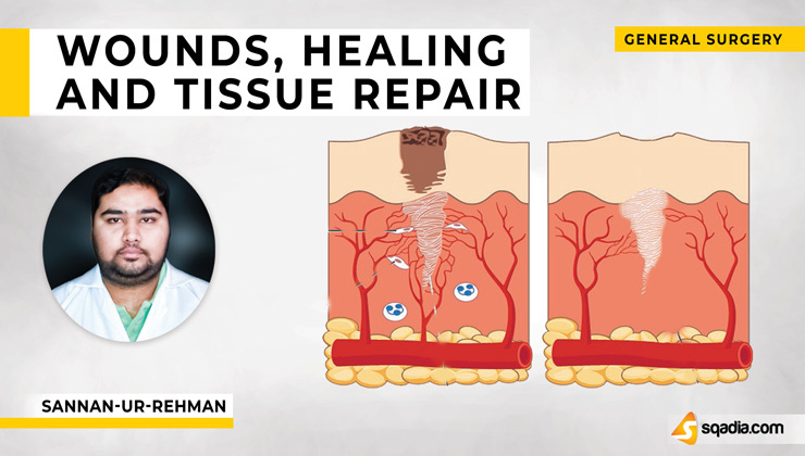Wounds, Healing and Tissue Repair