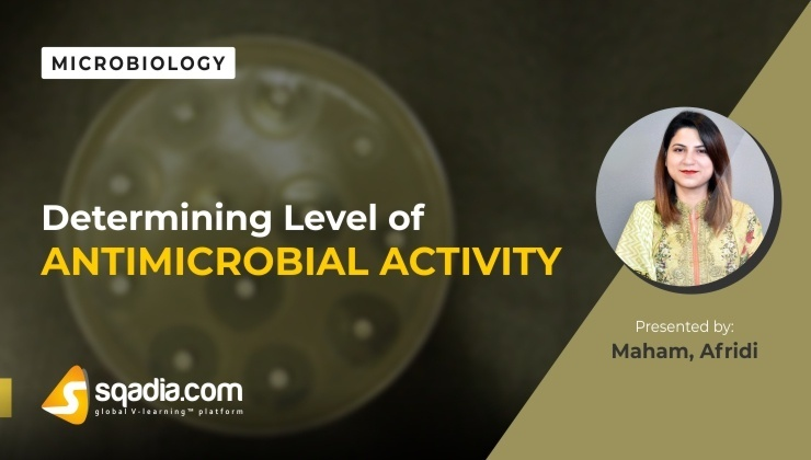 Determining Level of Antimicrobial Activity