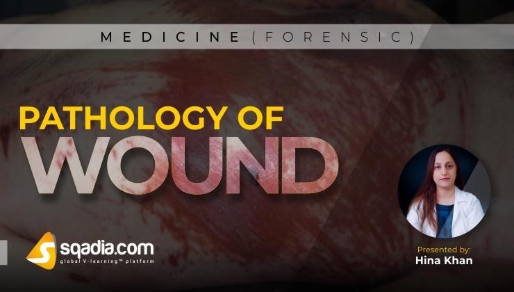 Pathology of Wound