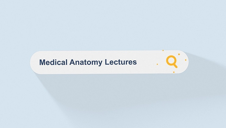 Medical Anatomy Lectures