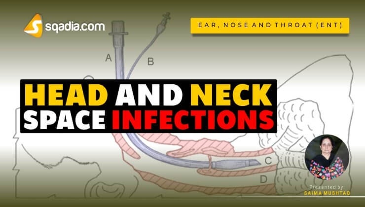 Head and Neck Space Infections