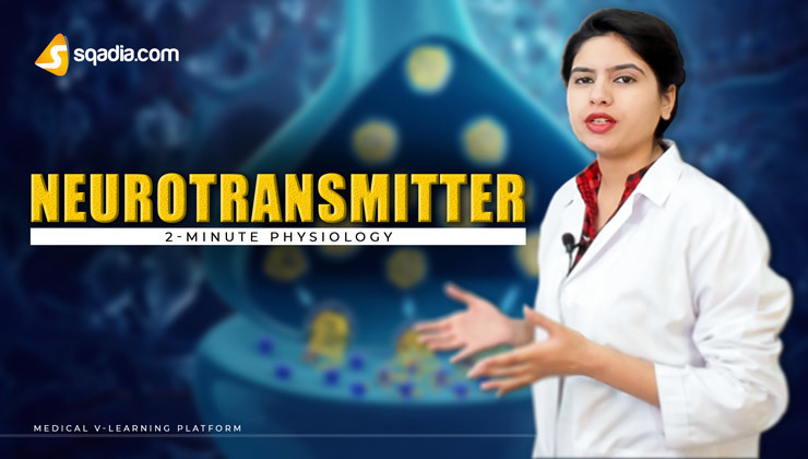 2-Minute Physiology: Neurotransmitter