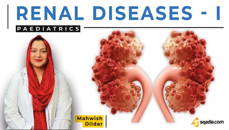 Renal Diseases - I