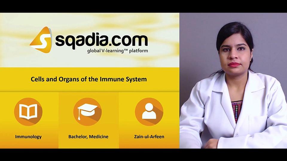 Bsby1xxgqhqxnycwzosf 171107 s0 arfeen zain cell and organ immune system intro