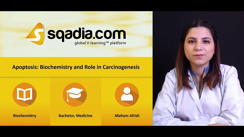 1lsqhgujsfyfthwxtt0v 171121 s0 afridi maham appoptosis biochemistry and role in carcinogenesis intro