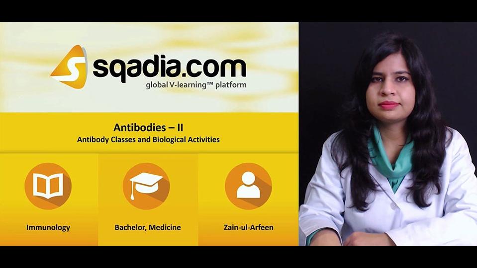 5qd4j5ormazi9tv4mvnz 171214 s1 arfeen zain antibody classes and biological activities