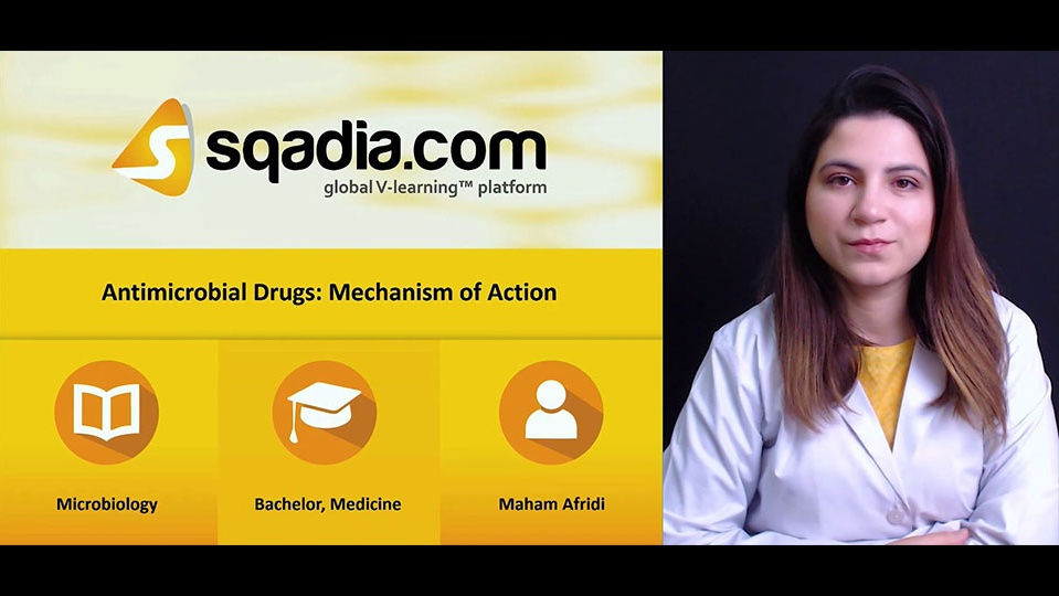 Yz0izqt0sow16q5zpwp6 180203 s0 afridi maham antimicrobial drugs mechanism of action intro