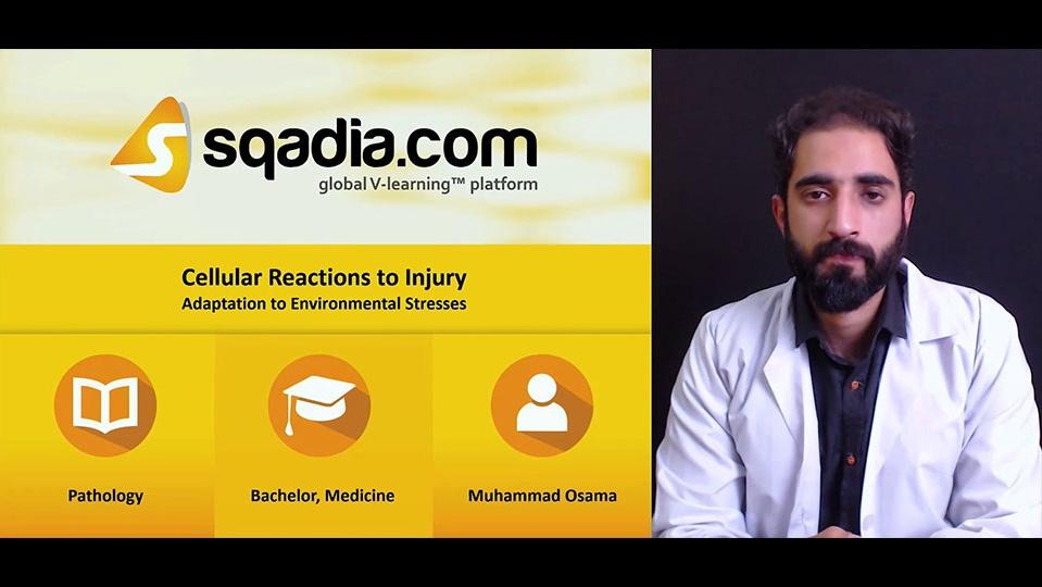 2hf8varwtdow9utlx197 180305 s2 osama muhammad free radical and chemical cell injury adaptation to environmental stresses