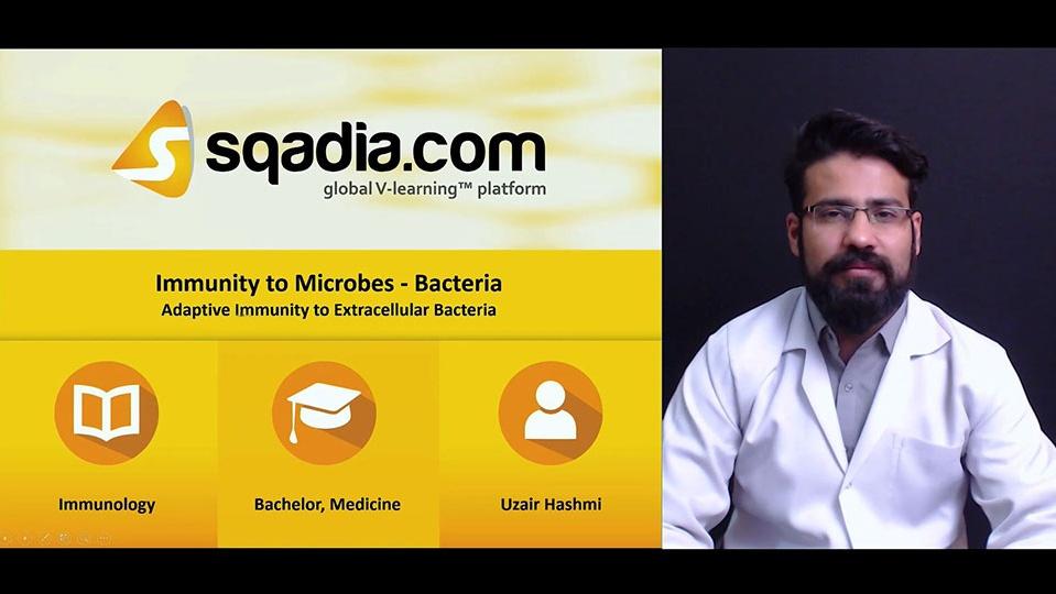 462xdtx5sdu6oitzpkbv 180328 s3 hashmi uzair adaptive immunity to extracellular bacteria